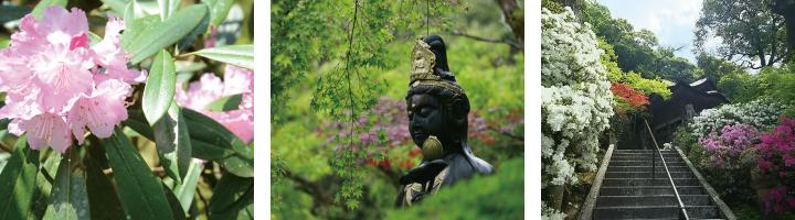 那谷寺の春
